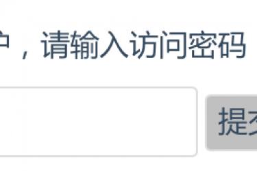 wordpress自定义密码文章的提示文字