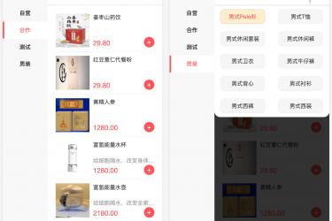 人人商城公众号端分类页展示子分类及其商品列表